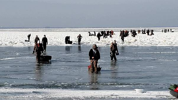 Coast Guard, local agencies rescue 46 from ice floe