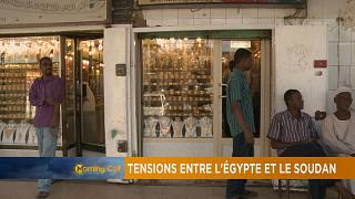 Egypt and Sudan diplomatic row gets deeper [The Morning Call]