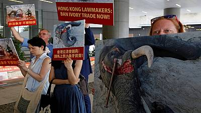Wildlife smuggling in spotlight in Hong Kong as African rangers push for ivory ban