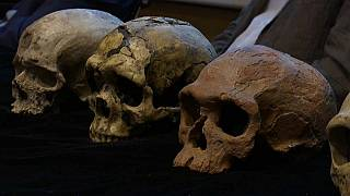 المغرب: اكتشاف بقايا هياكل عظمية تعود إلى 300 ألف سنة