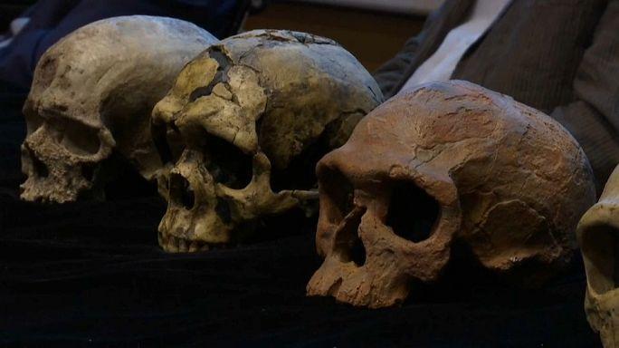 Sensationelle Entdeckung: Homo sapiens viel älter als gedacht