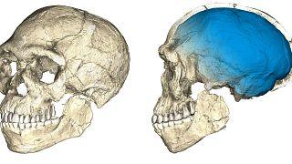 """""""Homo Sapiens"""": 105 mil anos mais antigo?"""