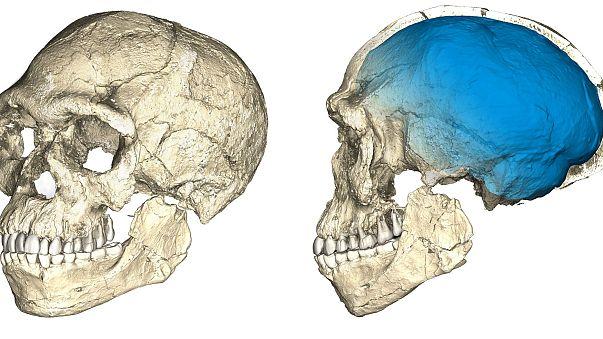 Homo-sapiens: un coup de vieux de 100 000 ans