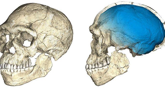 Человек разумный стал старше на 100 тысяч лет
