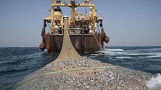 Pêche illégale : sept chalutiers chinois aux mains de la marine sénégalaise