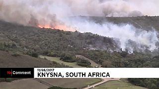 حريق ضخم في منطقة غابات كنيسنا بجنوب إفريقيا