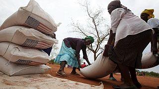 Le Zimbabwe interdit les importations de céréales
