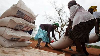 Zimbabwe bans grain imports after bumper harvest