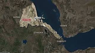 Eritrea backs Saudi Arabia and allies in Gulf crisis, Ethiopia on the fence