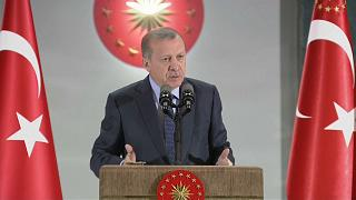 Erdoğan'dan tutuklama kararlarına tepki