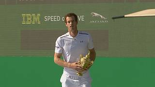 Can World Number One Andy Murray win Wimbledon again?
