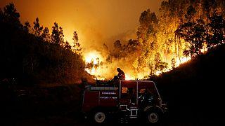 حرائق الغابات تودي بحياة 57 شخصا في البرتغال