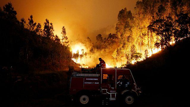 Vermutlich mehr als 60 Tote bei Waldbrand in Portugal