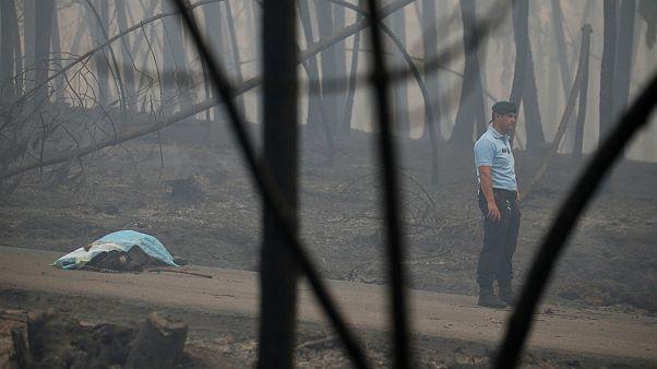 Portekiz'de orman yangını faciası