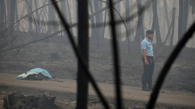 Death toll climbs above 60 in Portugal forest fire