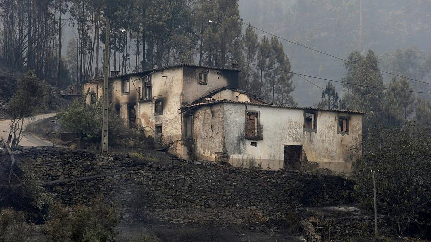 Verheerende Waldbrände in Zentralportugal