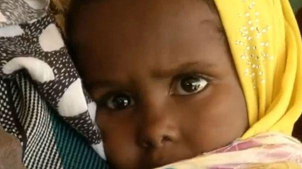 90 millió fontos segély Kelet-Afrikának az éhínség leküzdésére