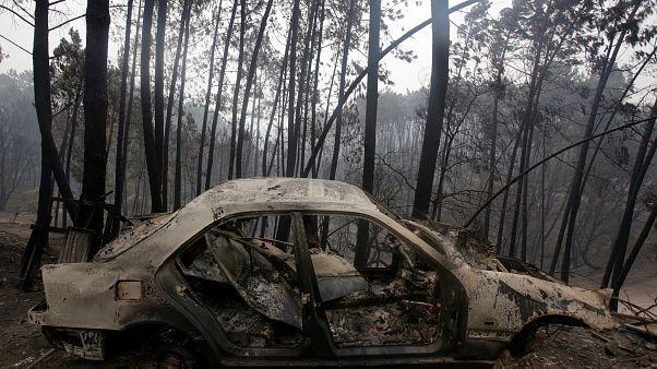 ارتفاع ضحايا حريق غابات ليريا إلى 62 شخصا