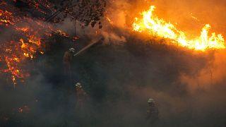 شاهد: صور ملتقطة عن طريق طائرة بدون طيار في البرتغال لضحايا الحرائق المهولة التي تشهدها البلاد