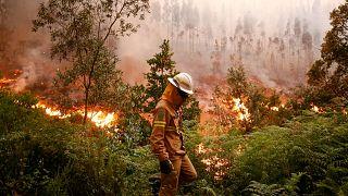 Под вопросом эффективность противопожарных мер