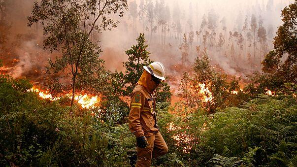 Incendi in Portogallo: una crisi europea