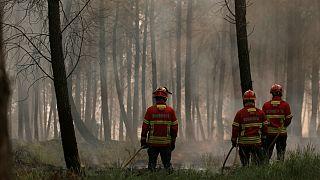 Incêndios em Portugal: Autoridades desmentem queda de avião