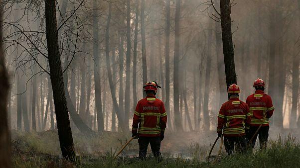 Πορτογαλία: Σεληνιακό τοπίο στα πύρινα μέτωπα -64 νεκροί