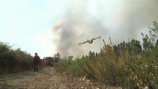 Löschflugzeug in Portugal abgestürzt