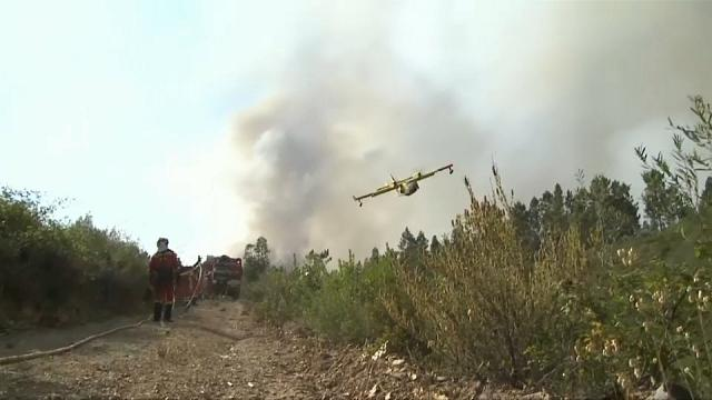 Reports of firefighting plane crash in Portugal turn out to be false
