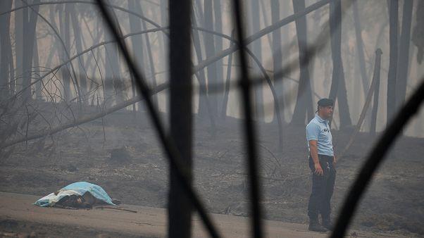آتشسوزی پرتغال؛ چرا این همه تلفات در یک کشور اروپایی؟