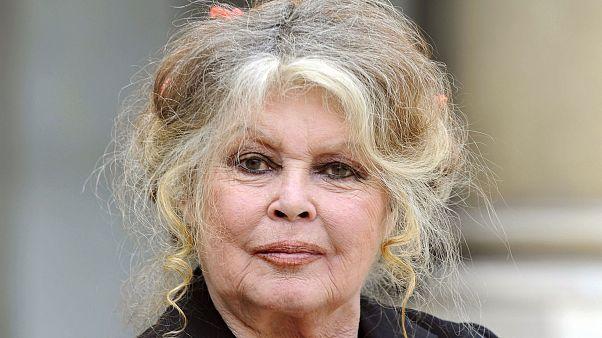 Image: Brigitte Bardot