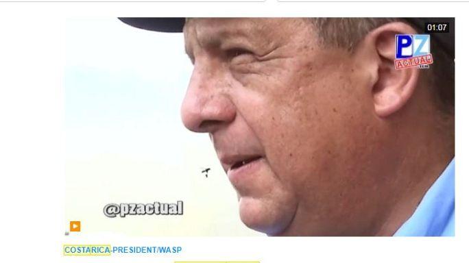 Kosta Rica devlet başkanı etrafında vızıldayan arıyı yuttu