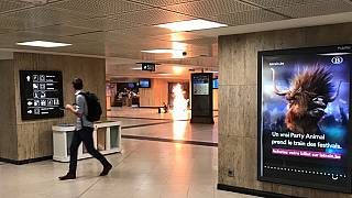 Meghiúsítottak egy merényletet Brüsszelben