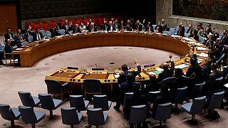 UN Security Council backs west African force to combat militants in Sahel
