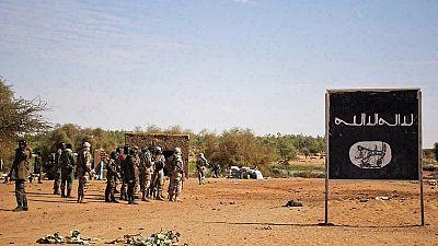 Cameroun : six morts dans un double attentat-suicide dans l'Extrême-Nord