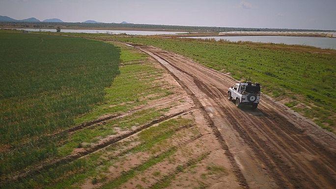In Angola il boom dell'agribusiness