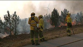 Portogallo: comandante delle operazioni conferma che è ''l'incendio è sotto controllo''