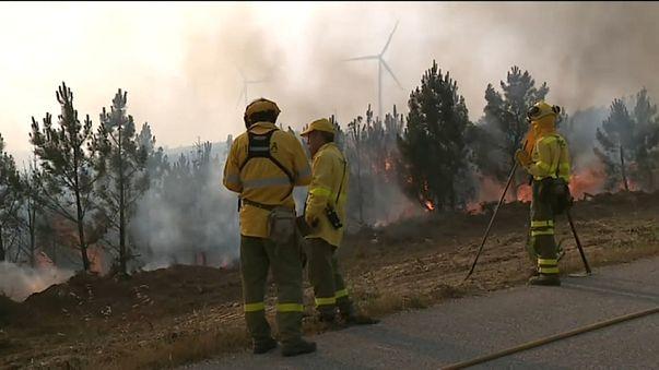 Portugal : le feu enfin vaincu