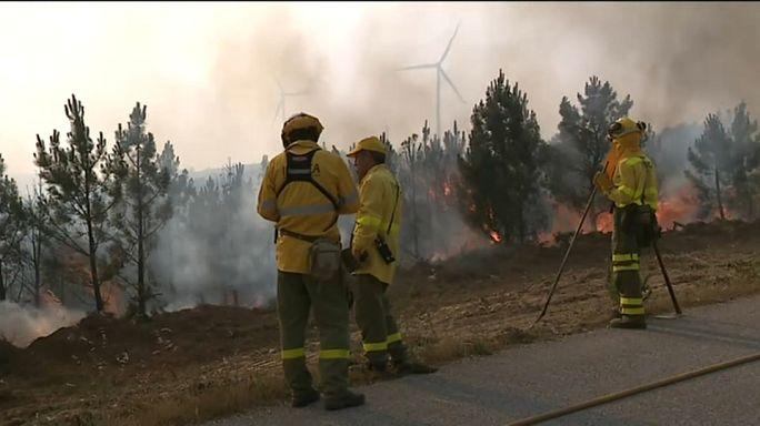 В Португалии потушили лесной пожар