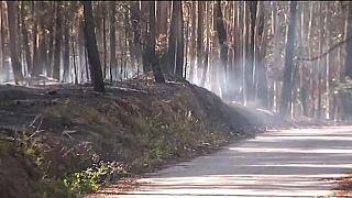 Portekiz yangının nedenini araştırıyor