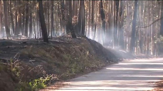 Les feux de forêt maîtrisés au Portugal
