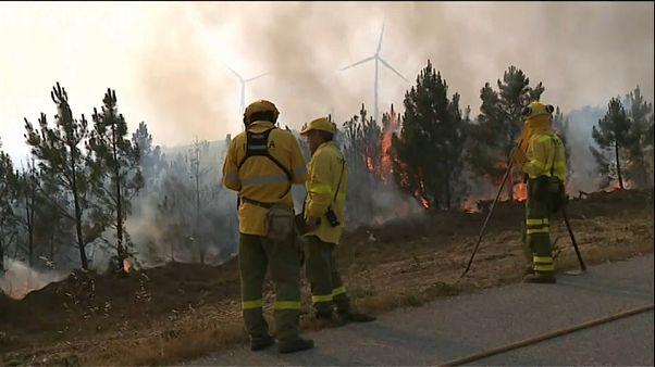 شاهد: السيطرة على الحرائق في البرتغال