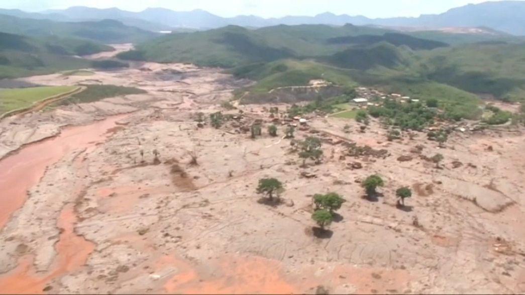 Norwegen: 50 Millionen Dollar weniger für den Regenwald