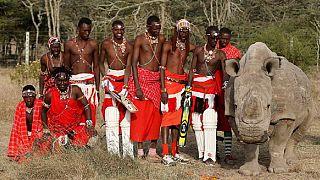 Kenya : un tournoi de cricket pour la conservation d'espèces menacées [no comment]