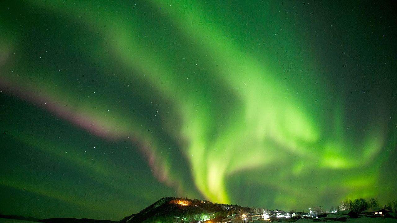 Image: Iditarod