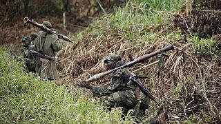 4 miliciens et 2 soldats tués dans des combats dans l'est de la RDC