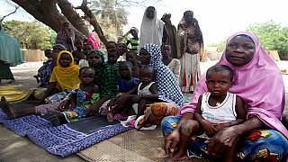 5.6 million children in Lake Chad region at risk of contacting waterborne diseases-UNICEF