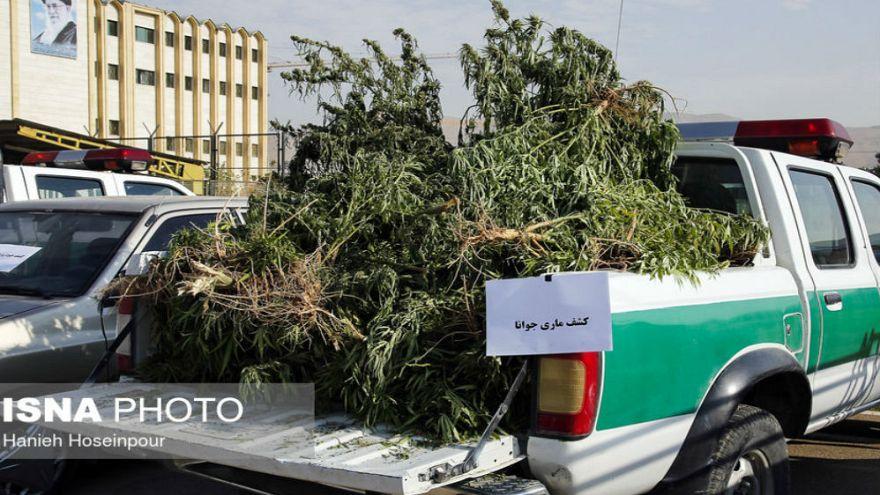 ستاد مبارزه با مواد مخدر: ایران ۲ میلیون و ۸۰۸ هزار معتاد دارد