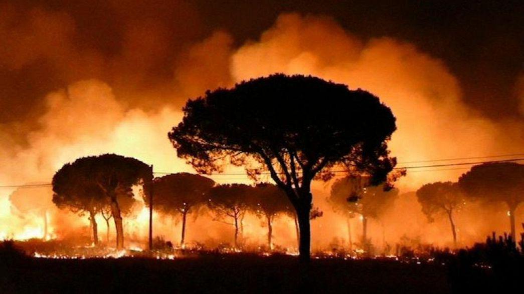 Sigue activo el fuego cercano a la reserva natural de Doñana