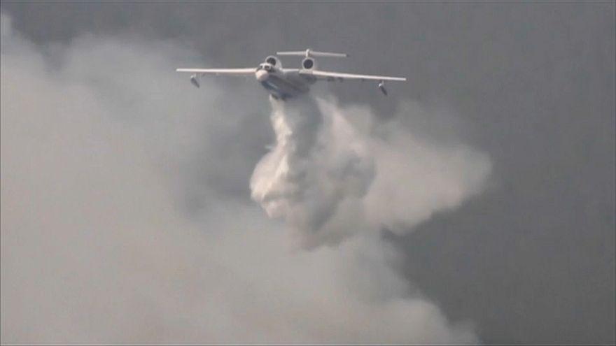 بالفيديو-حرائق الغابات في سيبيريا